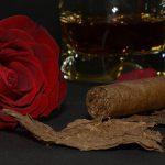 Zigarrenabende mit einem guten Glas